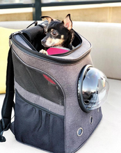 """The Big Mini"" Dog Backpack - For Bigger Small Dogs"