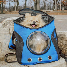 """The Explorer"" Dog Backpack"