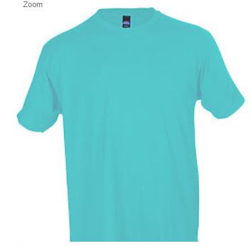 Tultex 202 100% Cotton Adult Aqua / X-Small Blank Apparel