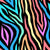 Rainbow Zebra Artwork