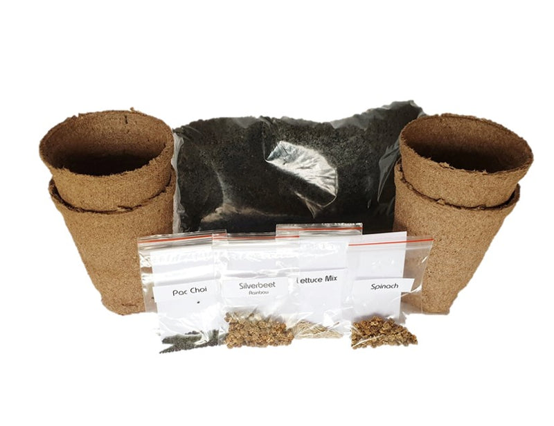 Sow Grow Enjoy Vegetable Seed Bio Pot Pack