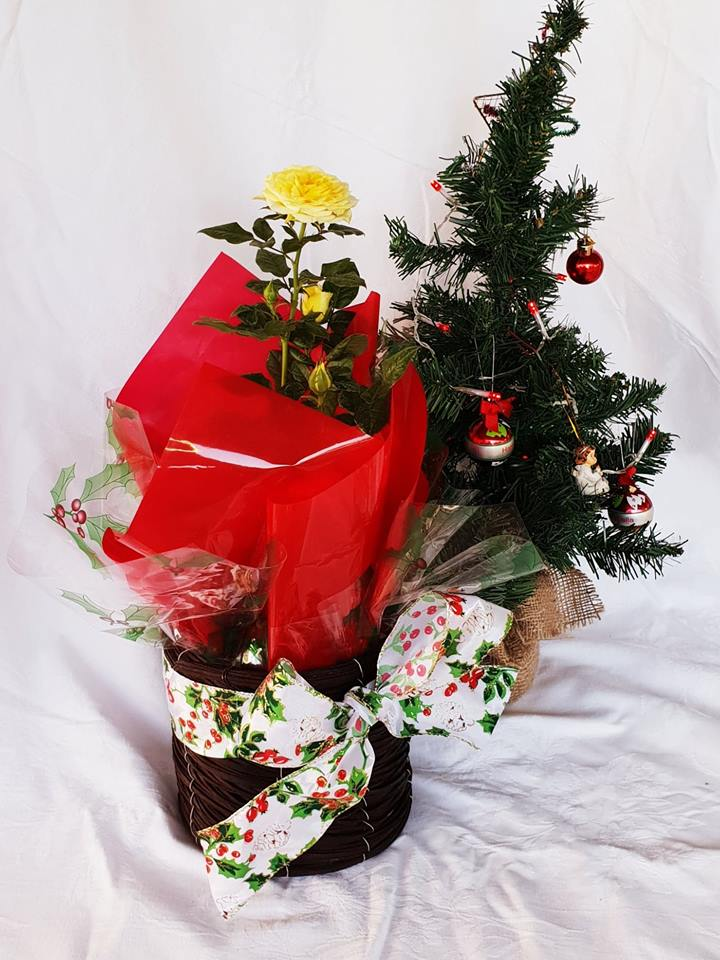 Large Christmas Gift Rose