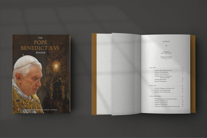 products/PSD-Mockup-of-BXVI-Reader-Book.jpg