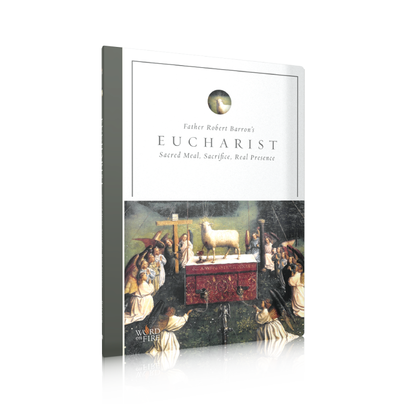 products/Shopify-Eucharist-DVD_800x_a2c6d1b2-d806-4cea-a1ee-f42dd3d9bedf.png