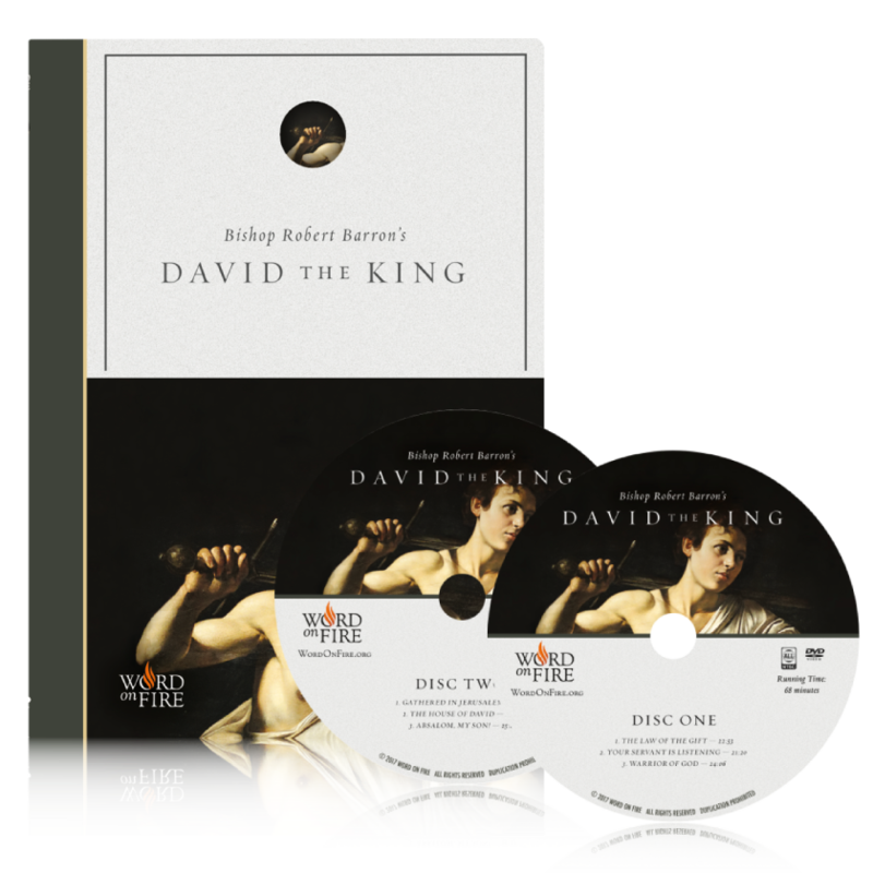 products/dvd-2-discs---david-the-king_800x_5222180b-c503-496a-8668-e7fff559fa9a.png