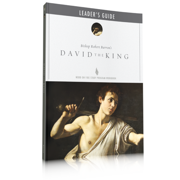 David the King - Leader's Guide