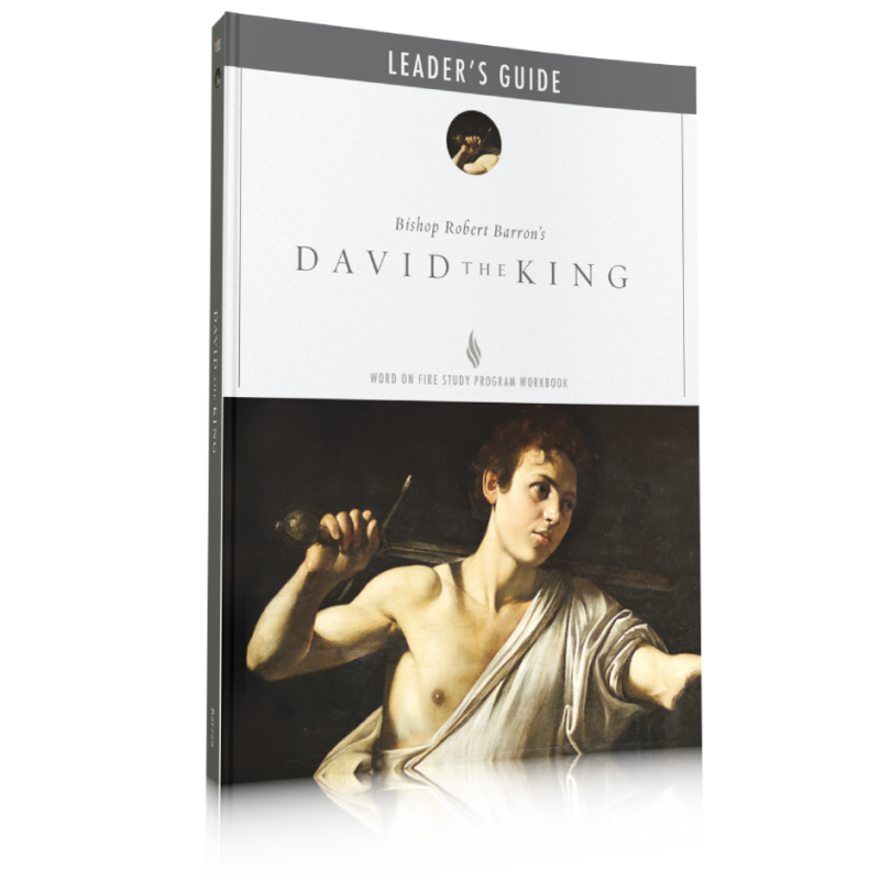 products/perfect-english-david-the-king-leader-guide_800x_b351a0ef-39f0-4d7d-aa10-fe06da269d38.png