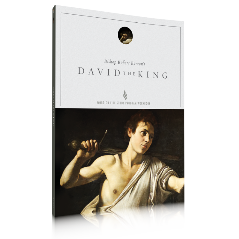 products/study-guide---david-the-king_800x_ece02504-cc41-4d0a-9a12-1f5cd1cffa71.png