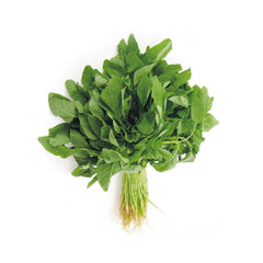Organic Chinese Green Spinach