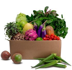 Asian Veggie & Fruit Box