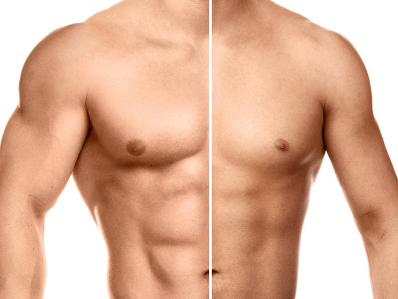 Shredding vs Bulking