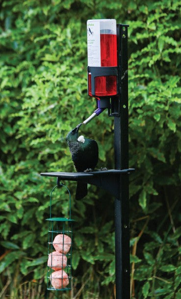 Peka Power Pack (Native bird feeding pack)