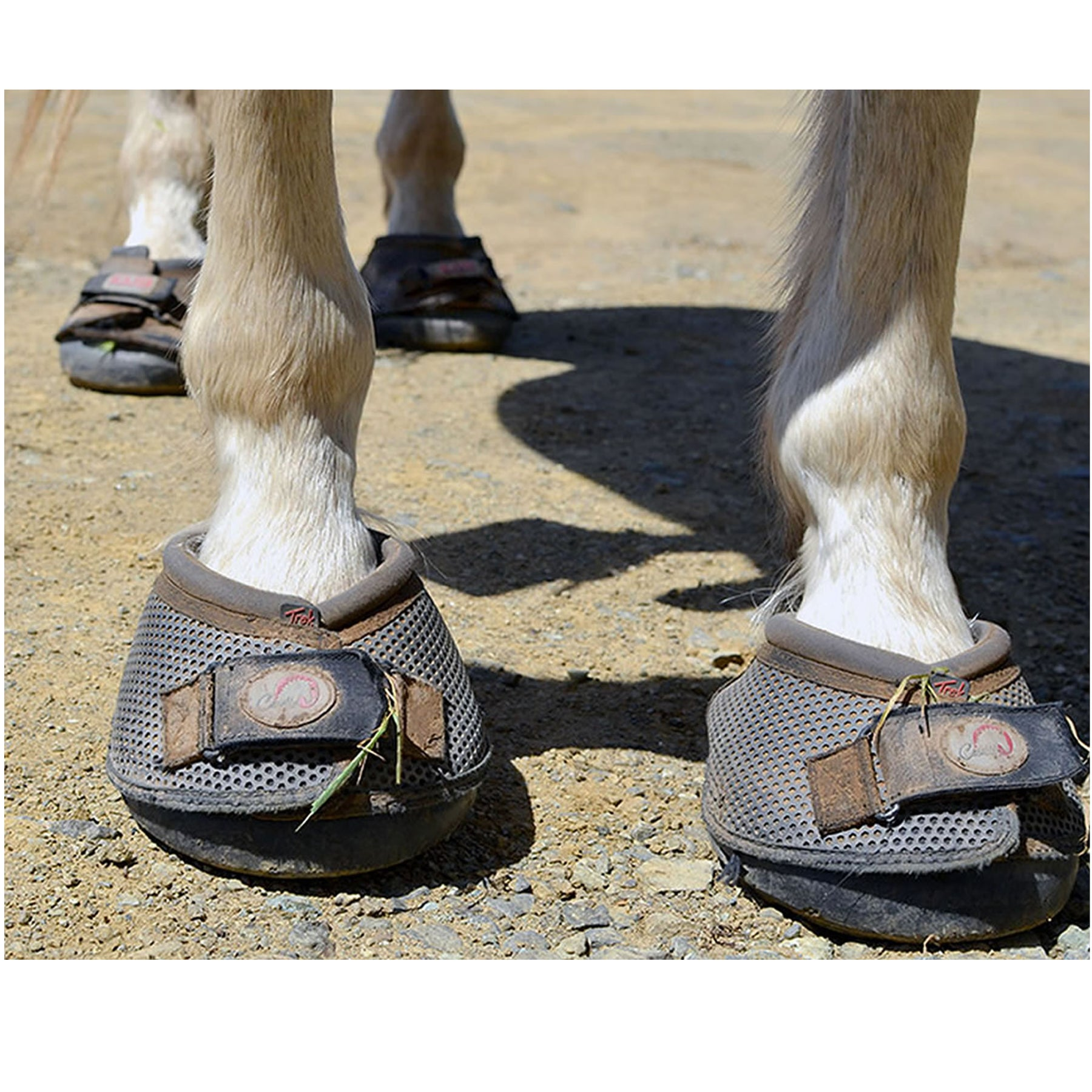 Ice Grip Hoof Boots for my Horse - ICEGRIPPER CUSTOMER STORY
