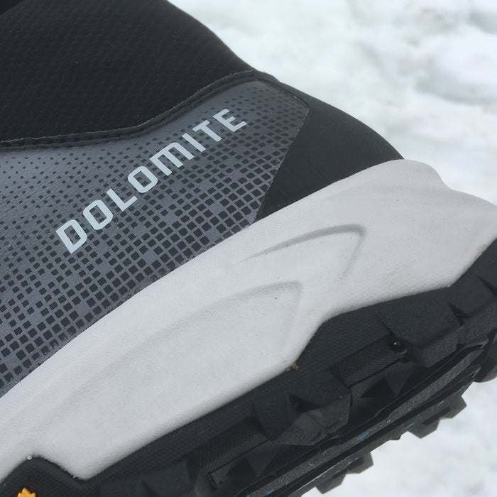 Dolomite Tamaskan for icy city streets