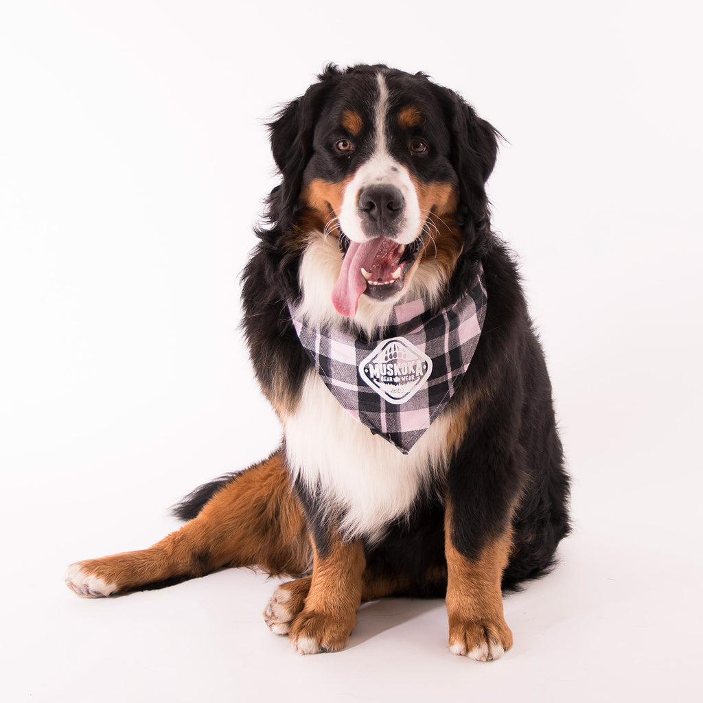 Muskoka Bear Wear – Doggie Bandana in Soft Pink Plaid