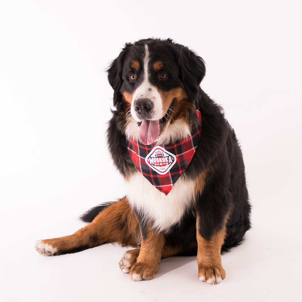 Muskoka Bear Wear – Doggie Bandana in Red Plaid
