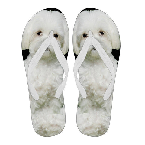 Maltese Flip Flops For Men-Free Shipping Limited Edition-Paww-Printz-Merchandise
