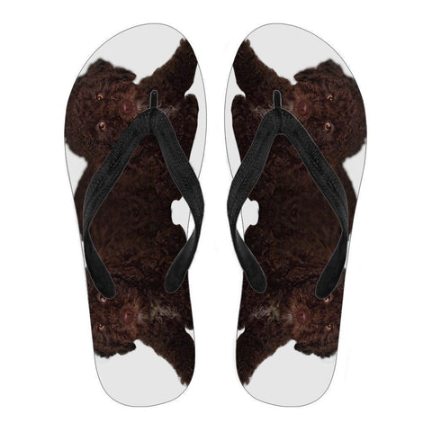 Spanish Water Dog Print Flip Flops For Men-Free Shipping-Paww-Printz-Merchandise