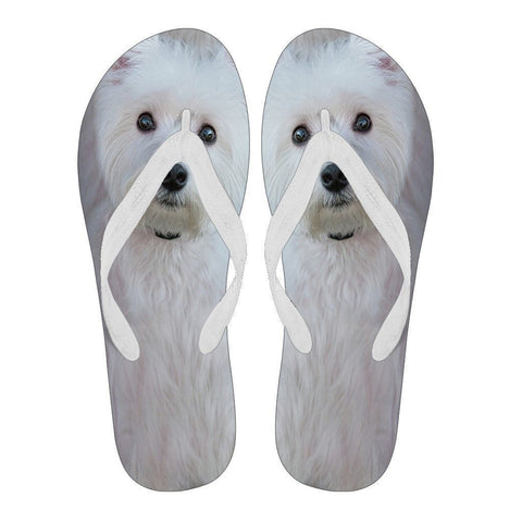 Westie Flip Flops For Men-Free Shipping-Paww-Printz-Merchandise