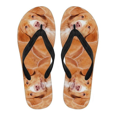 Nova Scotia Duck Tolling Retriever -Flip Flops For Men-Free Shipping-Paww-Printz-Merchandise