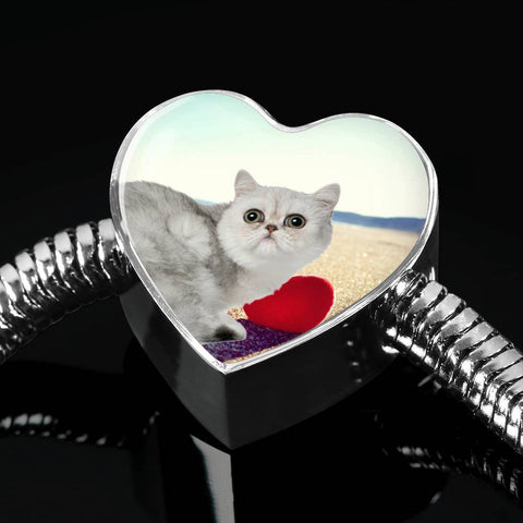 Exotic Shorthair Cat Print Heart Charm Steel Bracelet-Free Shipping