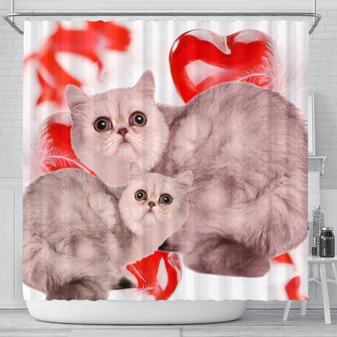 Exotic Shorthair Cat On Red Print Shower Curtains-Free Shipping