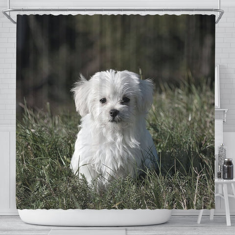 Cute Maltese Dog Print Shower Curtains-Free Shipping