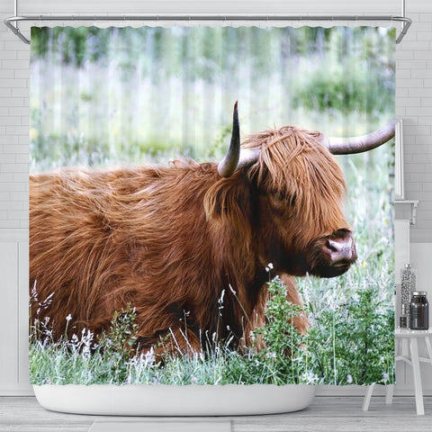 Amazing Highland Cattle (Cow) Print Shower Curtains-Free Shipping