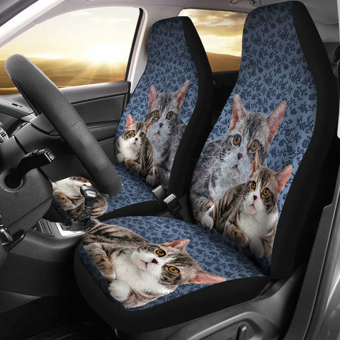 American Wirehair Cat Print Car Seat Covers- Free Shipping