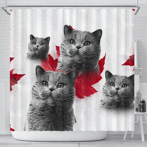 Lovely British Shorthair Cat Print Shower Curtains-Free Shipping