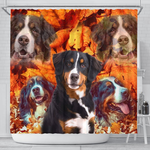Bernese Mountain Dog Print Shower Curtain-Free Shipping