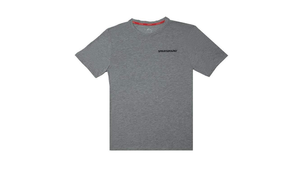 Blessed T- Shirts Gray