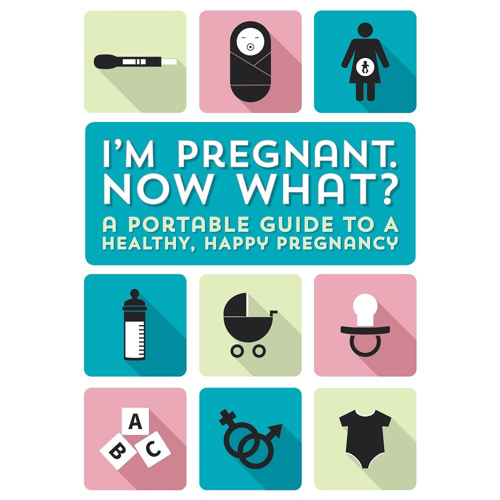PETER PAUPER PRESS - I'M PREGNANT NOW WHAT? BOOK