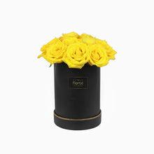 The Florté - You Are My Sunshine, Bloom Box