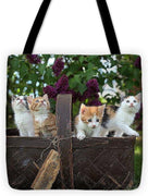Basket Full Of Kittens - Tote Bag - Create Your Own Custom Apparel T-Shirts Home Decor Lifestyle The Harry Potter Store