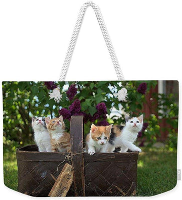Basket Full Of Kittens - Weekender Tote Bag - Create Your Own Custom Apparel T-Shirts Home Decor Lifestyle The Harry Potter Store