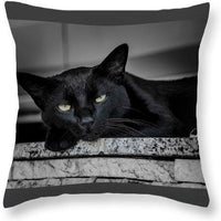 Black Cat - Throw Pillow - Create Your Own Custom Apparel T-Shirts Home Decor Lifestyle The Harry Potter Store