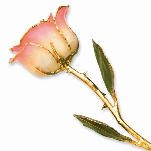 LAQUER DIPPED 24K GOLD TRIMMED WHITE PINK ROSE