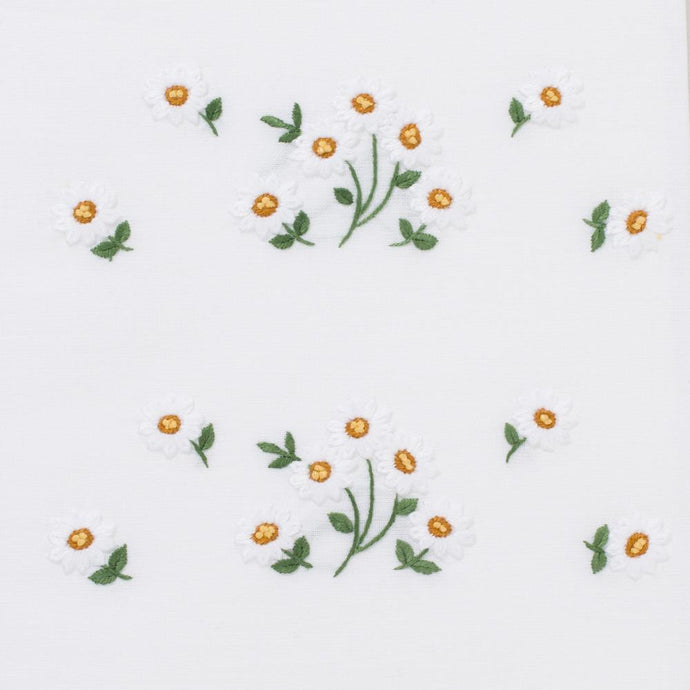 Daisies Scatter