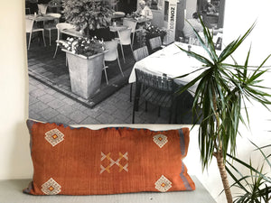 Red Orange Sabra cactus pillow | Olá Lindeza