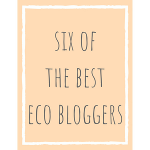 6 of the best eco bloggers