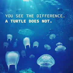Plastic bags in the ocean - You see the difference. A turtle does not.