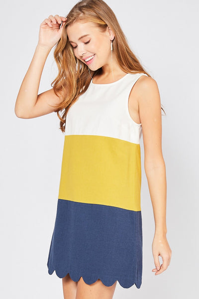 SLEEVELESS COLOR BLOCKED DRESS