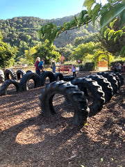 Tire jungle gym at the pumpkin patch.