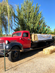 Vintage truck with hay bales greeting farm visitors.