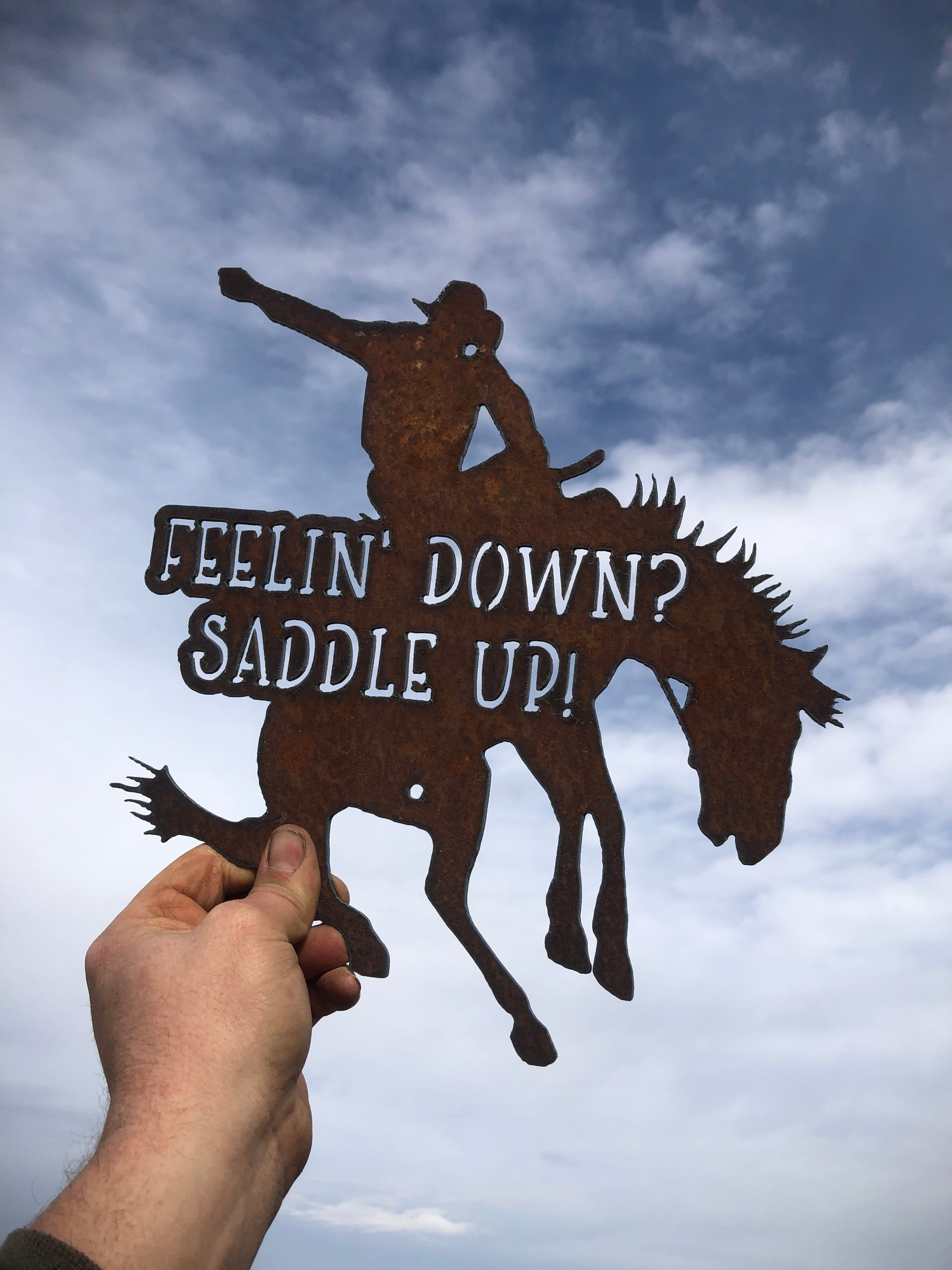 Feelin Down Saddle Up Metal Sign