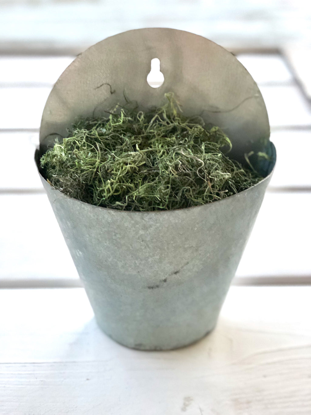 Galvanized Garden Bucket