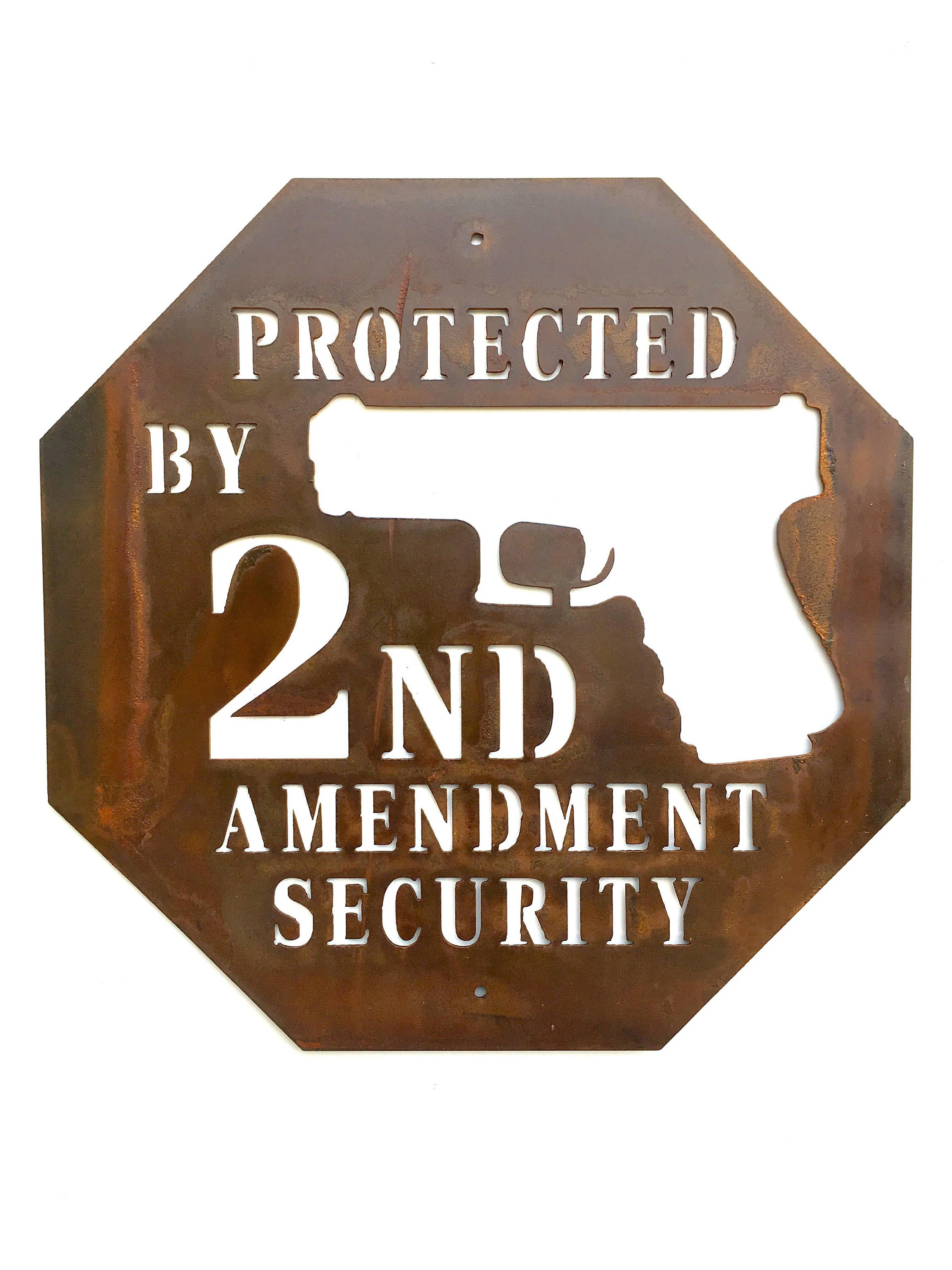 Protected by 2nd Amendment Security Metal Sign
