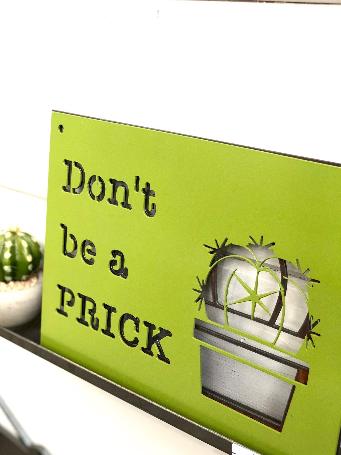 Don't Be a Prick succulent Metal Sign