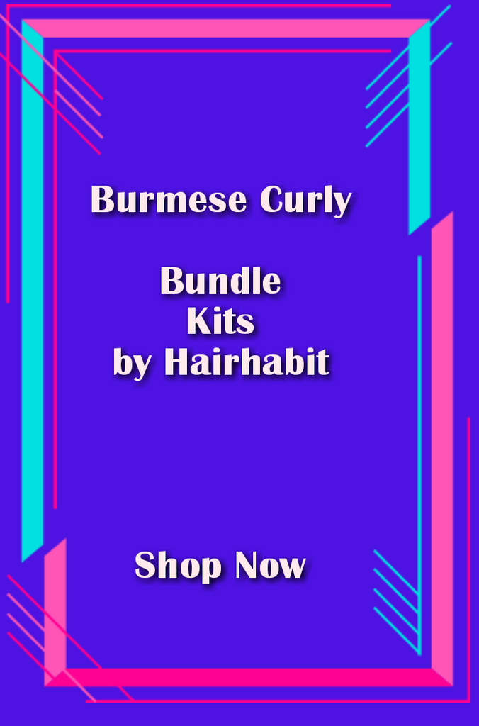 Bundle Deal with (1) 5×5  Burmese Curly Closure